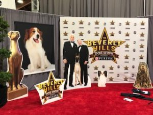 2019 Kennel Club of Beverly Hills Dog Show on NBC